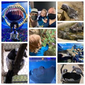 San Antonio Aquarium in Leon Valley, TX